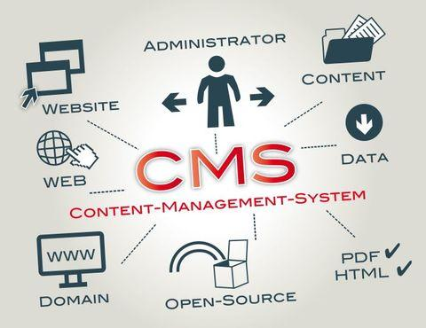 10 Reasons to Use WordPress as a CMS for Your Business